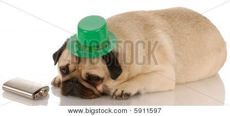 St Patricks Day Pug