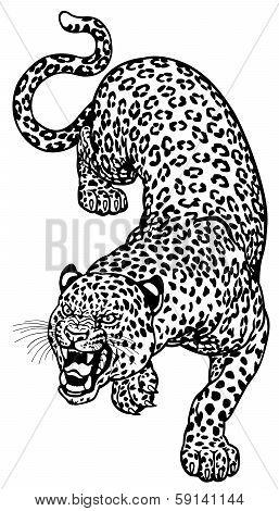 Leopard Tattoo Black White