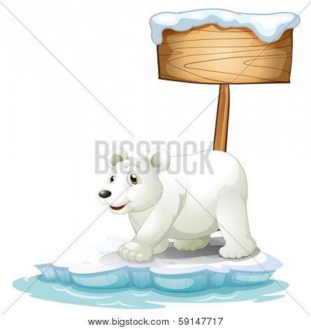 Polar bear on ice island