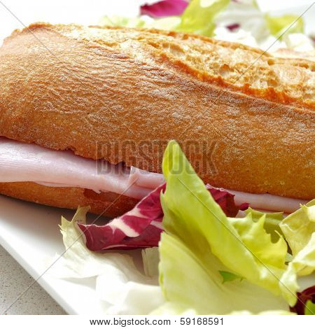 closeup of a plate with a sandwich ham and salad