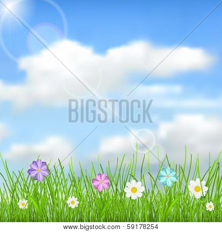 Background With Sky, Sun, Clouds, Grass And Flowers