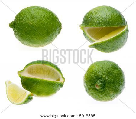 Limes in 4 Views