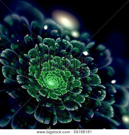 Dark GreenFractal Flower, Digital Artwork