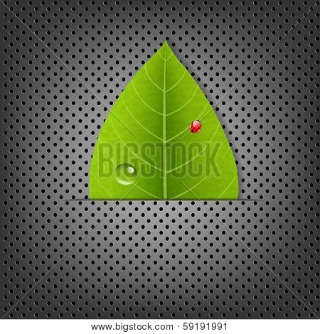 Metal Background With Green Leaf, With Gradient Mesh, Vector Illustration