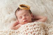 foto of monochromatic  - Portrait of a 12 day old newborn baby boy wearing a gold crown - JPG