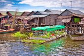 The floating vegetable gardens on floating village in Tonle Sap lake. Cambodia.