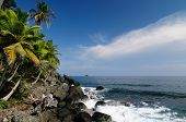 stock photo of encounter  - Colombia wild coast of the Caribbean sea near Capurgana resort where the Darien jungle is encountering the beach - JPG