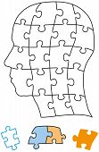 stock photo of brain teaser  - Head puzzle with single pieces which can be individually removed and arranged - JPG