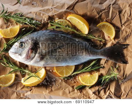 Raw dorado fish with rosemary and sea salt server on old paper