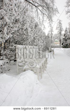 Banco en Winter Park