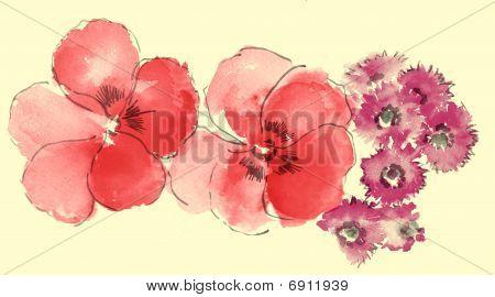 Watercolor Of Sakura And Daisy