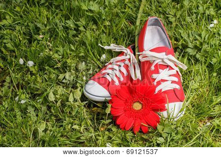 Red sneakers with gerbera flower