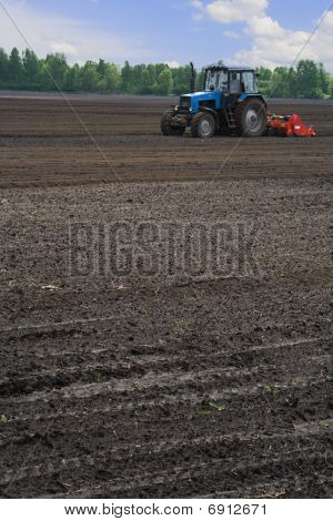 Tractor cultivating potato field (vertical view)