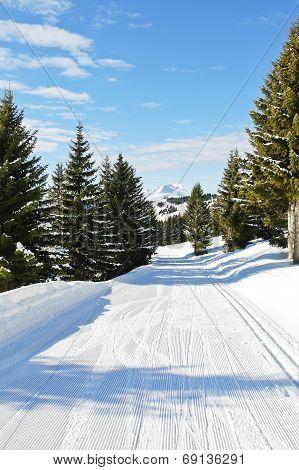 Ski Run In Snow Forest On Mountain In Avoriaz