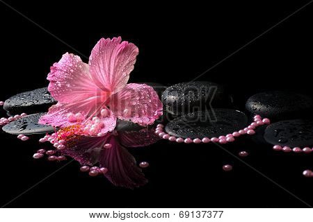 Beautiful Spa Still Life Of Pink Hibiscus, Drops And Pearl Beads On Zen Stones With Reflection Deep