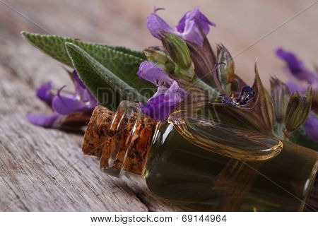 Fragrant Essence Of Sage In A Glass Bottle Macro. Horizontal