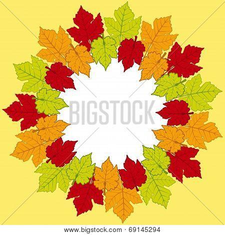 Autumn Leaf Border Background