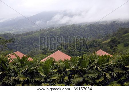 Rainforest at the foot of the Arenal Volcano in Costa Rica