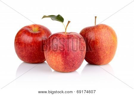 Studio Shot Of Red Apples With Leaf