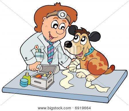 Dog with sick paw at veterinarian