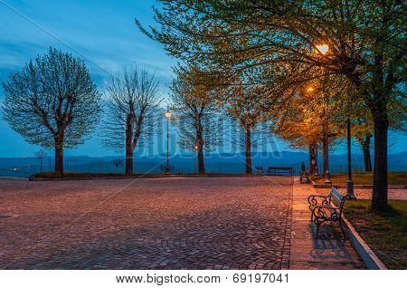 Bench under the tree illuminated by light from lamppost on small cobbled square early in the morning.