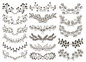 foto of symmetrical  - vector design hand drawn floral graphic elements - JPG