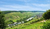 pic of moselle  - riverside of Moselle river with vineyards on green hills Germany - JPG