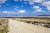 picture of falklands  - Gravel road from Port Stanley to North Pond on East Falkland - JPG