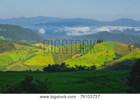 Rolling green hills and blue sky
