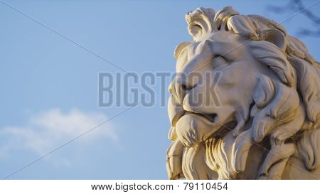 Statue of a lion's head