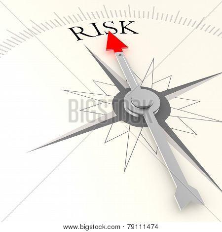 Risk Campass