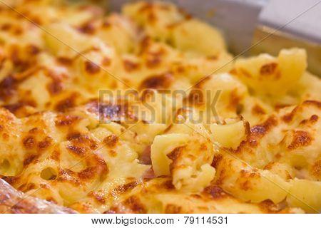 Close Up Of Lasagna.