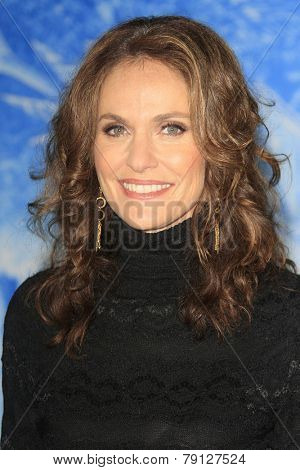 LOS ANGELES - NOV 19: Amy Brenneman at the premiere of Walt Disney Animation Studios' 'Frozen' at the El Capitan Theater on November 19, 2013 in Los Angeles, CA