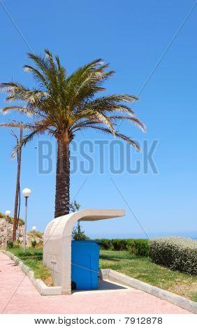 Garbage Bin Under Concrete Cover And Palm Tree, Crete, Greece