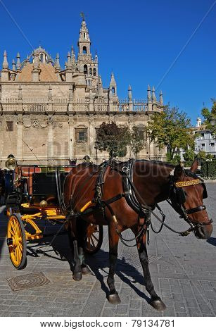 Horse and carriage, Seville.