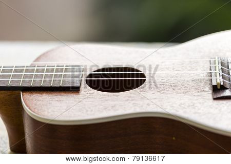 closeup macro image of Ukulele strings and sound hole