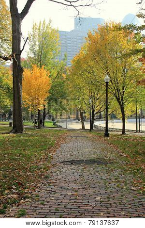 Nice walk through the park in the Fall