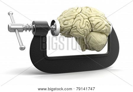 Brain in clamp (clipping path included)