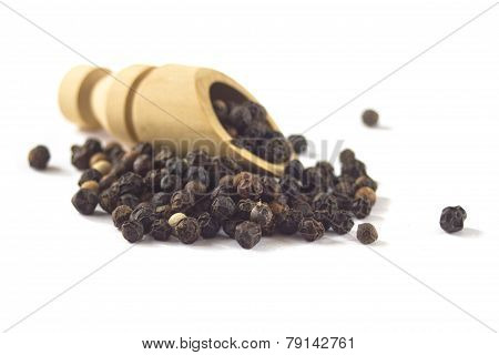 Black pepper  isolated on white