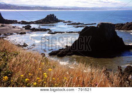 Oregon Coast - Newport
