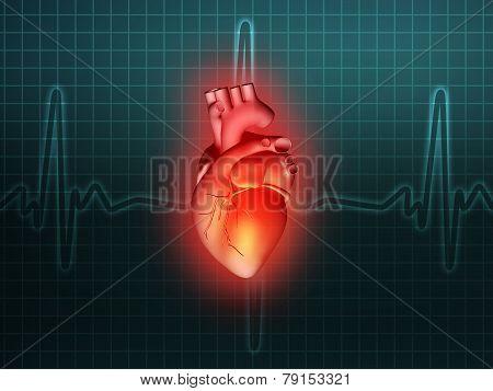 Heart Disease 3D Anatomy Illustration Turquoise