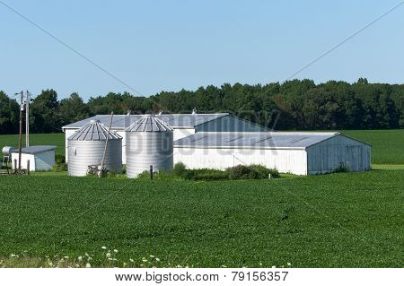 Buildings And Soybeans