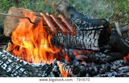 roastinghotdogs