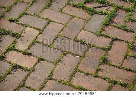 Stone Paving Overgrown Grass