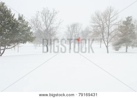 Golf Pin Red Flag In Snow Storm