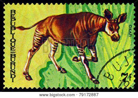 Vintage  Postage Stamp. Animals Burundi, Okapi.1.