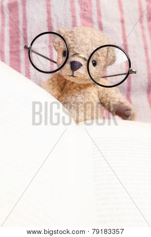 Reading Teddy Bear With Glasses