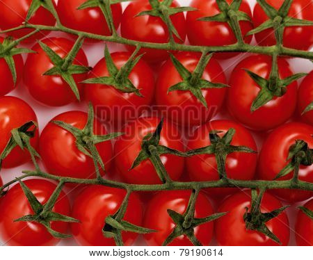 Panicles Tomato Branches As Background