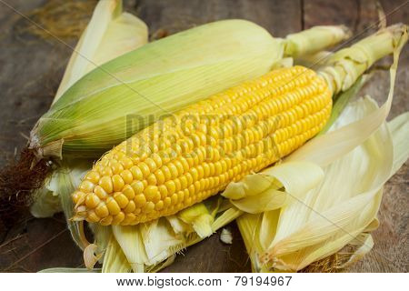 Corn Cobs On Wood Background, Still Life.