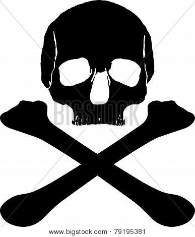 Skull Pirate Pattern